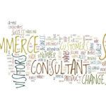 Ecommerce Consultants